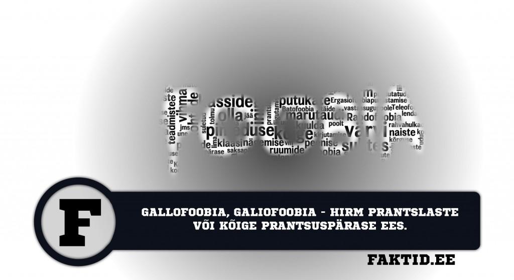 GALLOFOOBIA, GALIOFOOBIA   HIRM PRANTSLASTE VÕI KÕIGE PRANTSUSEPÄRASE EES foobia 166 1024x558
