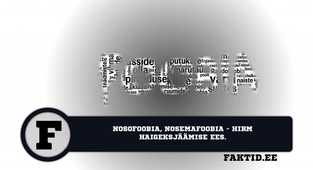 NOSOFOOBIA, NOSEMAFOOBIA   HIRM HAIGEKSJÄÄMISE EES foobia 377 1024x558
