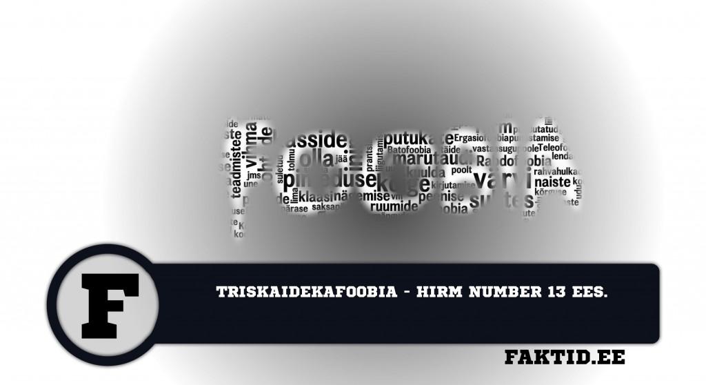 TRISKAIDEKAFOOBIA   HIRM NUMBER 13 EES foobia 554 1024x558