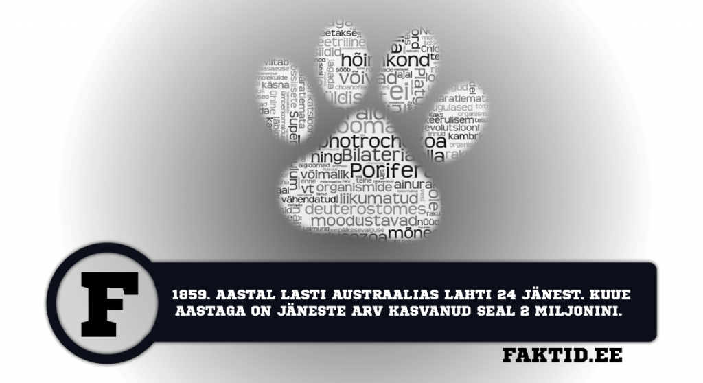 1859. AASTAL LASTI AUSTRAALIAS LAHTI 24 JÄNEST. KUUE AASTAGA ON JÄNESTE ARV KASVANUD SEAL 2 MILJONINI. loomad 32 1024x558