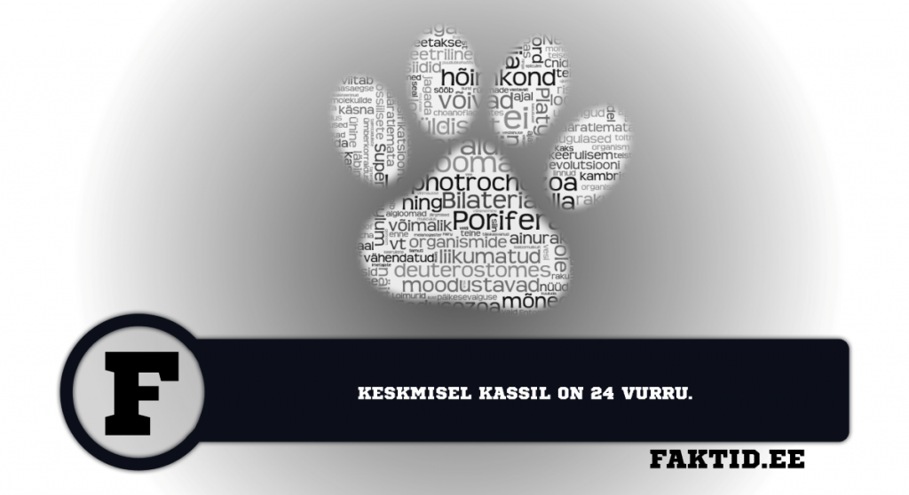 KESKMISEL KASSIL ON 24 VURRU. loomad 59 1024x558