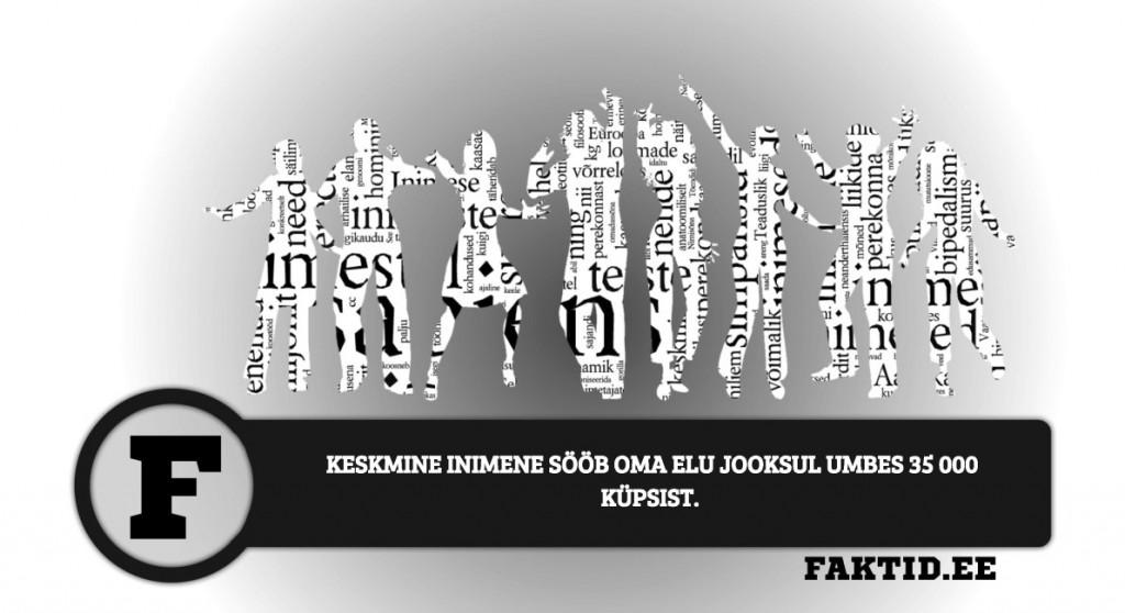 KESKMINE INIMENE SÖÖB OMA ELU JOOKSUL UMBES 35 000 KÜPSIST inimene 140 1024x558