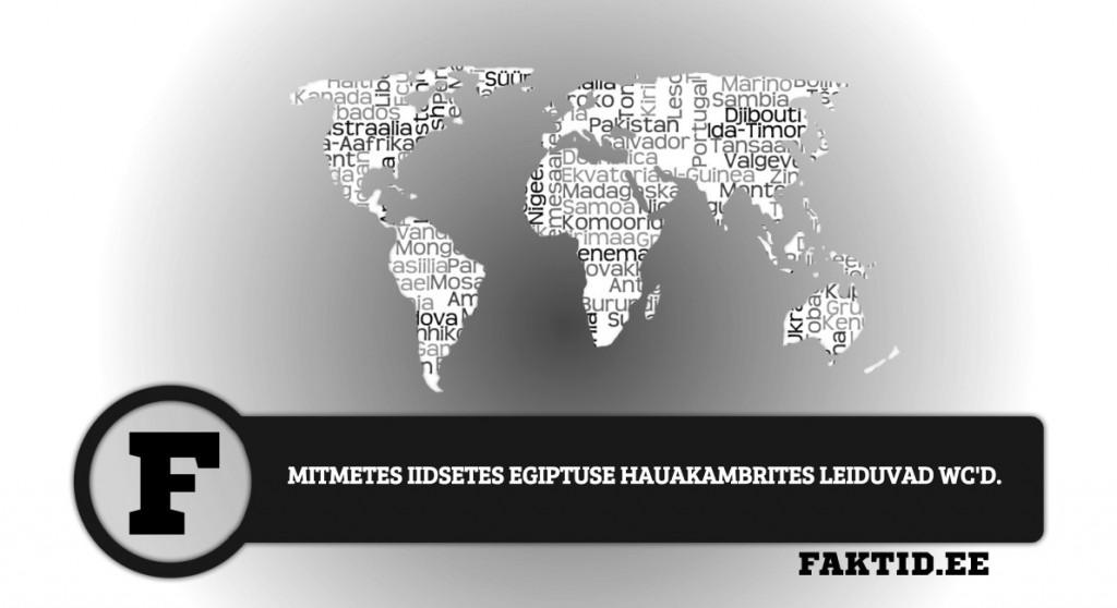 MITMETES IIDSETES EGIPTUSE HAUAKAMBRITES LEIDUVAD WCD riigid 50 1024x558