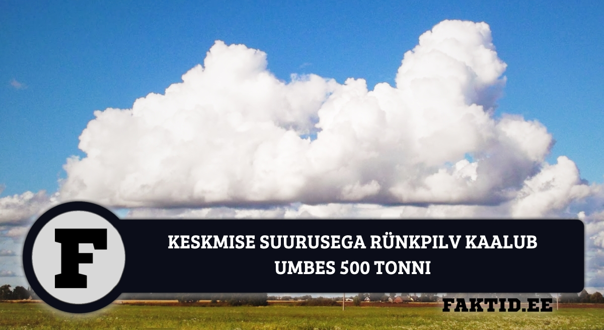 KESKMISE SUURUSEGA RÜNKPILV KAALUB UMBES 500 TONNI.