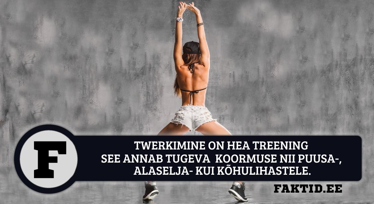 TWERKIMINE ON HEA TREENING - SEE ANNAB TUGEVA KOORMUSE NII PUUSA-, ALASELJA- KUI KÕHULIHASTELE.